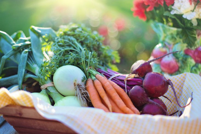 Fight Against Cancer with Food: Cancer-Fighting Foods