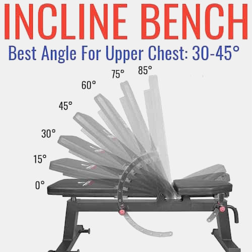 30-45 degrees - Incline Bench